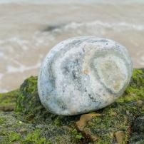 Ocean Jasper - Heart of the Bay Crystals Byron Bay