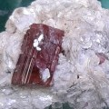 Rubillite Tourmaline - Heart of the Bay Crystals Byron Bay