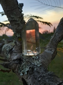 Citrine Crystal -A Discovery of Witches written by Deborah Harkness Book Review - Heart of the Bay - Byron Bay Crystals