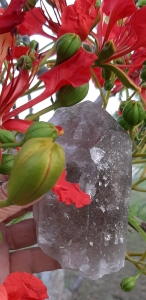 The perfect gift -The Simple Things - to make your heart sing - Byron Bay Crystals - Heart of the Bay Blog