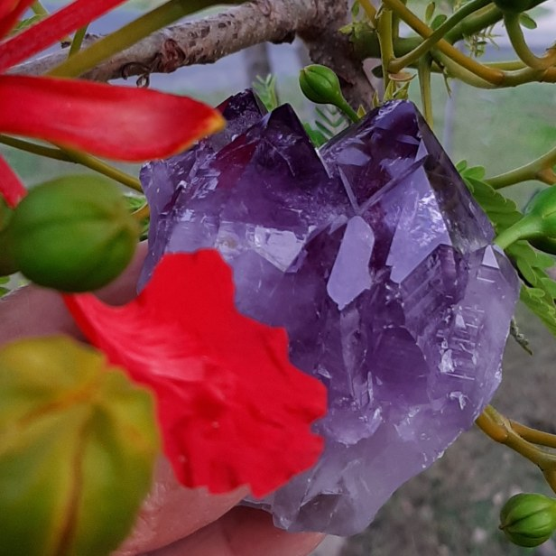 Amethyst cluster The Simple Things - to make your heart sing - Byron Bay Crystals - Heart of the Bay Blog