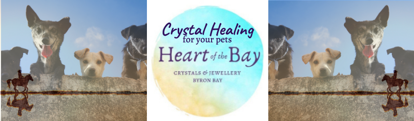 Crystal Healing for pets Byron Bay crystals Heart of the Bay